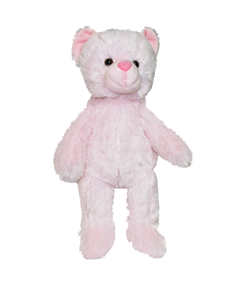 Pink Traditional Plush Bear - 15 Inch